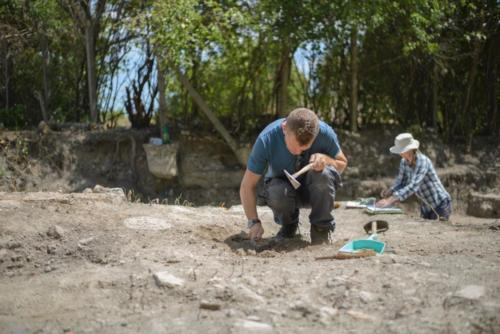 Excavations 2017